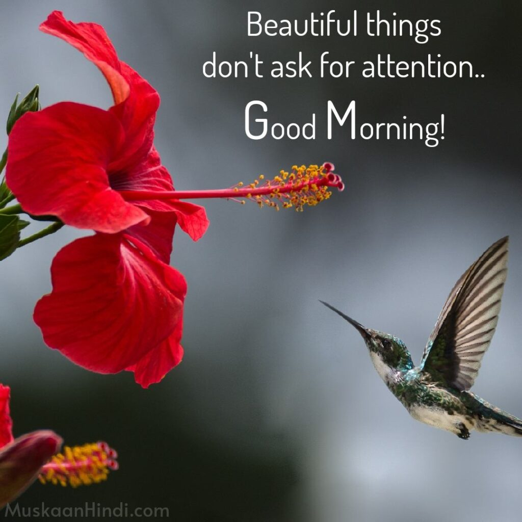 Best Beautiful Quotes on morning