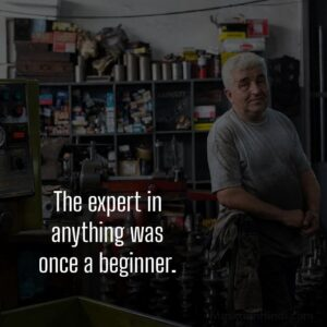 true lines about expertise